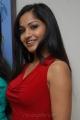 Actress Madhavi Latha Hot Images at Muse Art Gallery