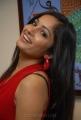Telugu Actress Madhavi Latha Hot Images