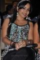 Actress Madhavi Latha New Photos at Ramappa Audio Release