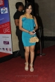 Madhavi Latha @ South Indian International Movie Awards Pre-Party
