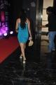 Madhavi Latha Hot Photos @ SIIMA 2013 Pre-Party