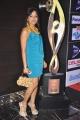 Madhavi Latha Hot Photos at SIIMA 2013 Pre-Party