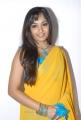 Madhavi Latha in Sleeveless Yellow Saree Stills