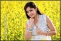 Telugu Actress Madhavi Latha New Hot Photoshoot Stills