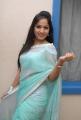 Telugu Actress Madhavilatha Hot Photos in Saree