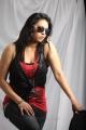 Pop Singer Madhoo Hot Photoshoot Stills for 'Desi Girl' Album