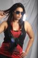 Singer Madhoo Hot Photoshoot Stills for 'Desi Girl' Album