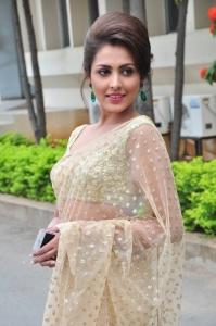 Actress Madhu Shalini in Saree Images @ Cheekati Rajyam Press Meet