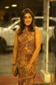 Goodachari Heroine Madhu Shalini Cute Photos