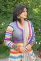 Telugu Actress Madhu Sharma in Colorful Dress Stills