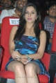 Madhurima Latest Hot Photos at Shadow Movie Audio Launch
