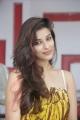 Telugu Actress Madhurima Banerjee Latest Pics