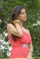Hot Madhurima Latest Photos at 101A Movie Opening