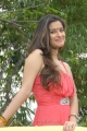 Madhurima Latest Photos at 101A Movie Launch