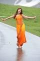 Actress Shruti Hassan in Magadheera Tamil Movie Stills