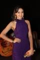 Actress Angana Roy @ Mahabalipuram Movie Audio Launch Stills