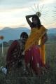 Ranjith, Bhanu Sri Mehra in Maharaja Sri Galigadu Telugu Movie Stills