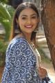 Actress Maira Doshi Photos at IIT Krishnamurthy Press Meet