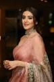Actress Malavika Sharma Saree Photos @ Red Movie Pre Release