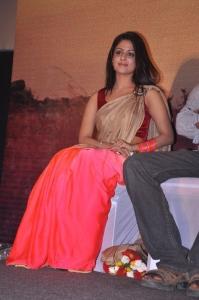 Tamil Actress Malavika Wales in Silk Saree Photos