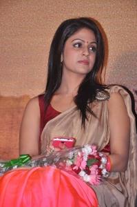 Tamil Actress Malavika Wales Cute Photos in Silk Saree