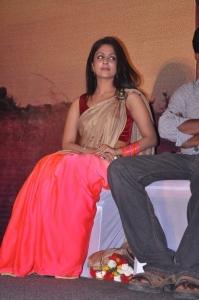Azhagu Magan Actress Malavika Wales in Saree Photos