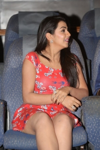Actress Nikki Galrani @ Malupu Movie Press Meet Stills