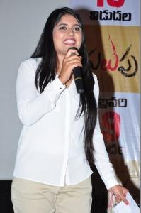 Malupu Movie Press Meet Stills