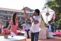Aadhi, Nikki Galrani in Malupu Telugu Movie Stills