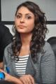 Madhu Shalini @ Mana Madras Kosam Fundraising by Telugu Film Stars Press Meet