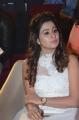 Actress Manali Rathod Pics @ MLA Pre Release Function