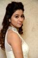 Actress Manali Rathod Pics @ MLA Pre Release Event