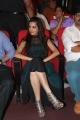 Actress Diksha Panth @ Manam Movie 100 Days Celebration Stills
