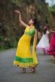 Actress Disha Pandey in Manasunu Mayaseyake Movie Stills