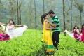 Disha Pandey, Prince in Manasunu Mayaseyake Movie Stills