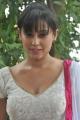Actress Disha Pandey at Manadhil Maayam Seidhaai Movie Launch Stills