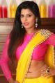Manisha Pillai in Saree Photos @ Miss Traditional 2015 Curtain Raiser