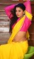 Manisha Pillai Hot Photos @ Miss Traditional 2015 Curtain Raiser