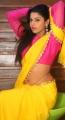 Manisha Pillai Photos @ Miss Traditional 2015 Curtain Raiser, Hyderabad