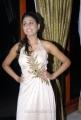 Heroine Manisha at Premalo Padithe Audio Release