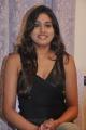 tamil_actress_manisha_yadav_hot_pics_stills_in_black_dress_7636