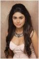 Tamil Actress Manisha Yadav Hot Spicy Photoshoot Stills