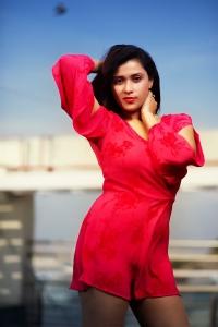 Actress Mannara Chopra Red Dress Photoshoot Pictures