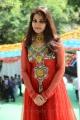 Actress Nandagi Photos @ Malligadu Marriage Bureau Movie Launch