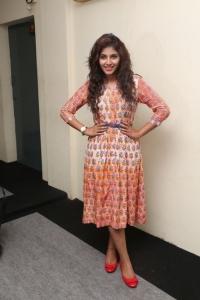 Actress Anjali @ Mapla Singam Movie Team Interview Photos