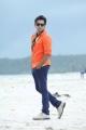 Actor Ram in Masala Movie New Stills