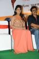 Actress Anjali @ Masala Movie Platinum Disc Function Stills