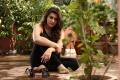 Actress Hansika Motwani At Meagamann Tamil Movie Photos