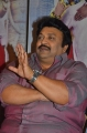 Actor Prabhu @ Meen Kuzhambum Mann Paanaiyum Press Meet Stills