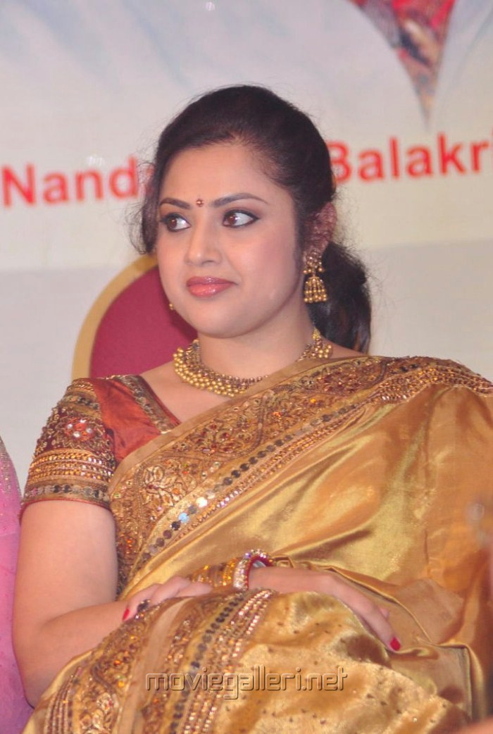 Meena Saree Latest Pics